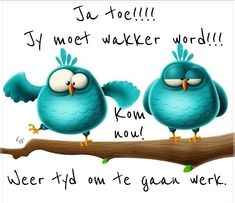 Afrikaanse Quotes, Goeie More, Good Morning Quotes, Owls, Gift Ideas, Humor, Christmas Ornaments, Holiday Decor, Gifts