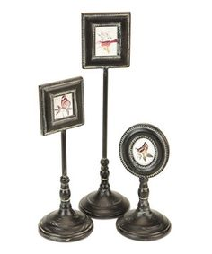 Loving this Nature Standing Picture Frame Set on #zulily! #zulilyfinds