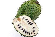 Dicen que el zumo de esta fruta; la guanábana, es un importante remedio contra el cáncer y tumores. Es uno de los pocos remedios naturales que han sido efectivos para todos los tipos de cáncer -especialmente de mama, colon, próstata y pulmones-. Por otra parte, no tiene los efectos secundarios de la quimioterapia y la …