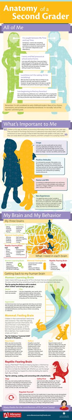 #Infographic with physical, social, cognitive, and emotional norms for #secondgrade. Awesome info! The brains of second graders are processing information and making connections much more effectively. As a result, sarcasm, puns, jokes, inferences….anything with multiple meanings is fuel for their budding humor and wit!