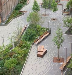 Beekman St. Plazas, NYC by Field Operations with Piet Oudorf. Click image for description and visit the slowottawa.ca boards >> http://www.pinterest.com/slowottawa/boards/