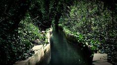 Respirar verde...