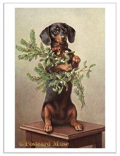 Dachshund With Mistletoe Vintage Postcard