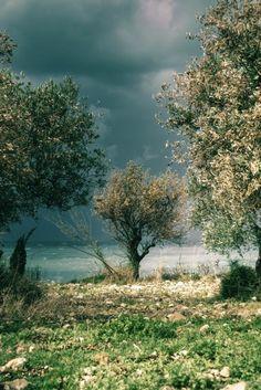Batroun - Liban par Clara Abi Nader via National Geographic