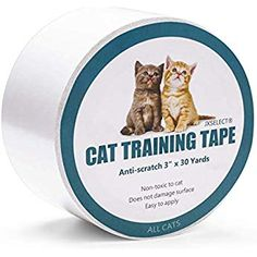 24 best mia images in 2019 cat cat condo cat scratching post rh pinterest com