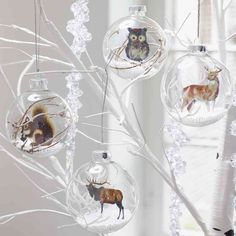 Netradičné vianočné gule sklenené NATURE-FAUNA . rozmer : 8cm bal.4ks