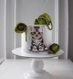 Gorgeous Cakes, Pretty Cakes, Amazing Cakes, Fondant Cat, Birthday Cake For Cat, Dog Cakes, Cake Icing, Cat Party, Creative Cakes