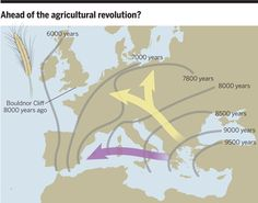 The Archaeobotanist: Mesolithic cereal trade in Europe?