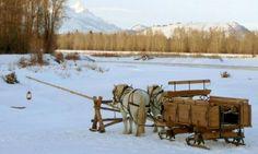 Grand Teton Sleigh Rides
