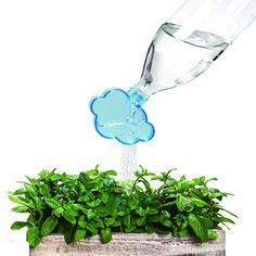 Rainmaker Plant Cloud Watering Can by Peleg Design from Mocha
