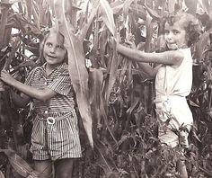 1940's little girls in corn field
