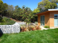 Tiburon Bay House - modern - Landscape - San Francisco - Shades Of Green Landscape Architecture