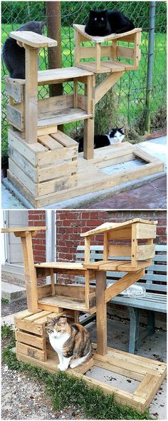 Recycled Pallets recycled pallets cats playhouse tree house - Wood pallet creations are countless in numbers. Pallet ideas are getting importance with the passage of every single day. Wood Pallet Recycling, Diy Recycling, Recycled Pallets, Wood Pallets, Pallet Wood, Diy Pallet Furniture, Diy Pallet Projects, Pallet Ideas, Rustic Furniture