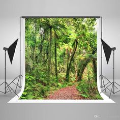 5x7ft Digital Printing Green Photography Backgrounds Spring Natural Scenery Photo Backdrop Forest Background for Wedding Photographic Wedding Background Forest Photo Backdrop Natural Background Photography Spring Tree Photo Backdrop Online with $156.12/Piece on Fanny08's Store | DHgate.com