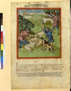 Tacuinum Sanitatis - BNF Ms. Latin 9333 Date: Rhineland, mid- 15th century.  fol 69v Gazellenfleisch