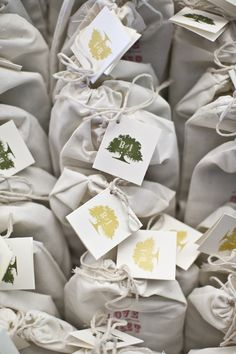 Blue Planet Green Events » Weddings Sustainable Wedding, Go Green, Fundraising, Muse, Planets, Floral Design, Gift Wrapping, Events, Weddings