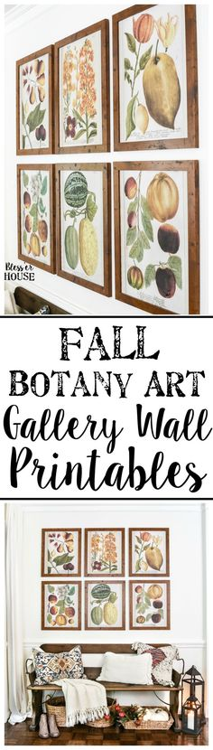 Fall Botany Art Gall