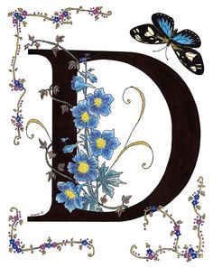 """D"" Delphinium And Butterfly ~ Constance Widen"