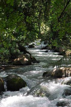Israel Pictures - Israel National News Banyas River