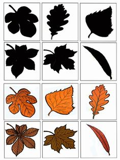 1 million+ Stunning Free Images to Use Anywhere Fall Preschool Activities, Toddler Learning Activities, Montessori Toddler, Preschool Printables, Montessori Activities, Preschool Worksheets, Preschool Crafts, Autumn Crafts, Autumn Art