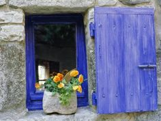 More of the blue and yellow combination of french country colors.