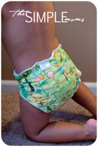 Cheeky Cloth diaper!  http://www.thesimplemoms.com/2012/10/get-your-fluff-on-with-cheeky-cloth-review-and-giveaway.html#