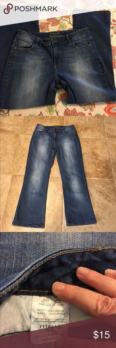 Jeans, Premium Riders by Lee, size 16P Jeans, size 16P, EUC,comfortable stretchy fit. Front & back pockets. Like new Lee Riders Jeans Boot Cut