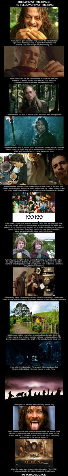The Fellowship Of The Ring fun facts. Ironically, I'm listening to the soundtrack right now.