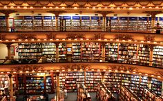 Murder Lab: Why Your Favorite Book is Not in the Bookstore (An...