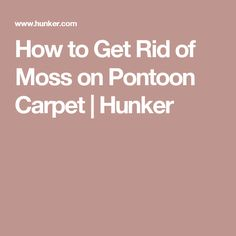 How to Get Rid of Moss on Pontoon Carpet | Hunker