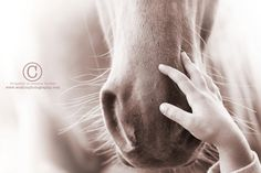 """To be loved by a child by Jessica Holder. """"No horse is as blessed at the one that is loved unconditionally by a child."""""""
