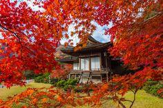 Okochisanso Garden, Japan