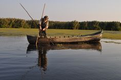 Danube Delta Danube Delta, Fishing, Projects, Pictures, Log Projects, Photos, Blue Prints, Peaches, Grimm