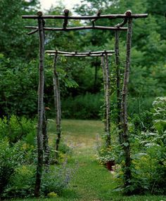 Make your own pergola/arbour, very informal, good for a quiet space, or bulked up for a more visible space