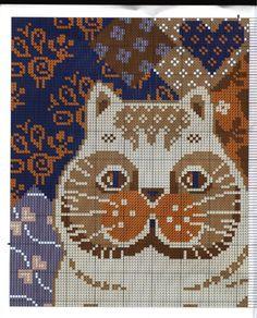 Gallery.ru / Фото #2 - CATS 3 - KIM-2