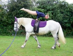 Found on Google from northcotehorses.com