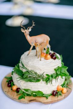 AH! Mint leaves with rosemary? And I would do a naked cake with either drizzle or powdered sugar and blackberries! elle photography - woodland cake