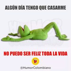 Humor Grafico - Variado 3.0 DF - Taringa! Cute Quotes, Funny Quotes, Funny Memes, Hilarious, Funny Shit, Spanish Humor, Kermit The Frog, Humor Grafico, Good Jokes