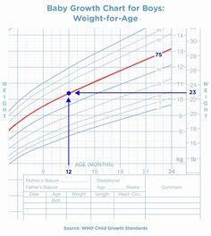 37 Weight Chart For Men Ideas Weight Charts Weight Chart For Men Chart