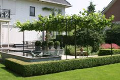 Omg my dream, has most elements I love. Espalier cut trees, hedging, lush green lawn and potted round topiary.