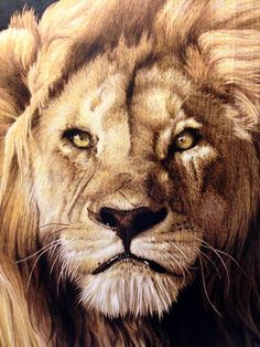 Minisa Robinson - Pyrography Artist - View her Gallery