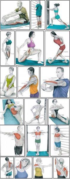 Делаем полноценную растяжку✌ Выполняйте каждое упражнение по 1 минуте.