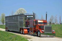 Livestock-Bull Wagons