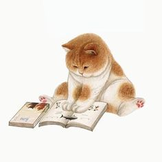 Ideas For Funny Art Illustration Kitty I Love Cats, Crazy Cats, Cute Cats, Funny Drawings, Animal Drawings, Animals Watercolor, Funny Illustration, Illustration Pictures, Cat Illustrations