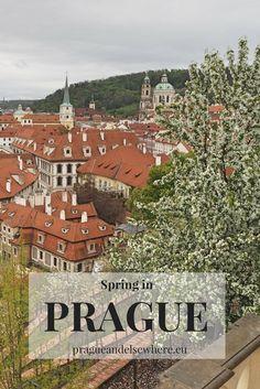 Best locations to enjoy Prague in spring, Czech Republic