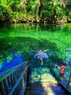 Blue Spring State Park: manatees and Florida's most perfect swimming spot Blue Spring State Park: manatees and Florida's most perfect swimming spot,Vacation Rob Taylor swimming at Blue Spring State Park Daytona Beach 4 Places In Florida, Visit Florida, Florida Travel, Vacation Places, Vacation Trips, Dream Vacations, Travel Usa, Florida Beaches, Siesta Key Florida