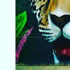 #graffiti  . . . . . . . . . #bogota #bogotaniando #paisajeurbano #art #arteurbano #artecallejero #pictureofday #picoftheday #instagram #mural #grafiti Grafiti, Painting, Instagram, Urban Landscape, Urban Art, Street Art, Painting Art, Paintings, Painted Canvas