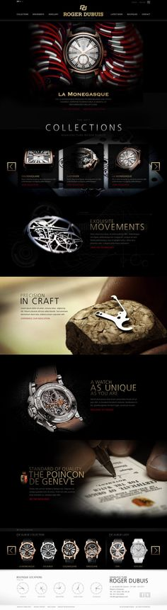 ROGER DUBUISWatch the official web site design[4P].jpg
