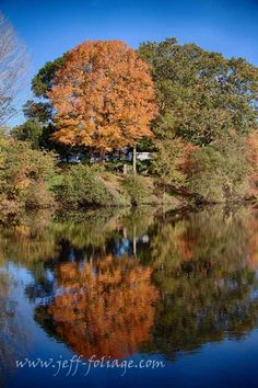 Tips for fall foliage photography - New England fall foliage  #Photography #tips