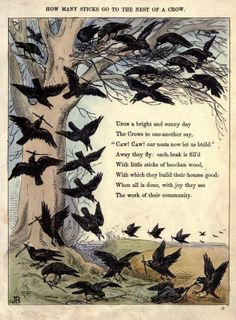 """From """"Caw caw; or, the chronicle of crows"""" / by RM Crow Art, Raven Art, Illustrations, Illustration Art, Art Romantique, The Frankenstein, Pomes, Jackdaw, Crows Ravens"""